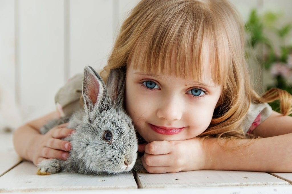 Top Pet Care Blogs