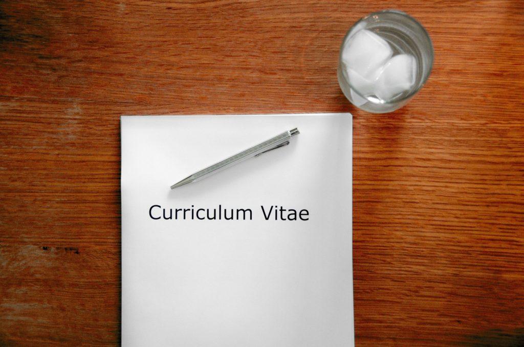 Best CV websites