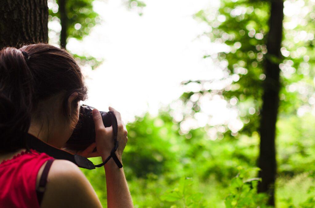Freelance photography